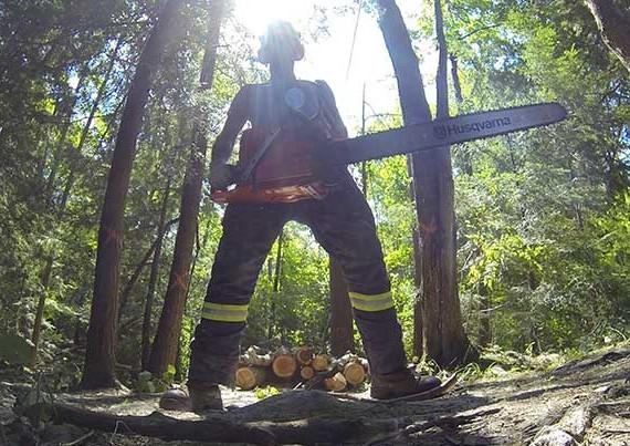 Forest Work