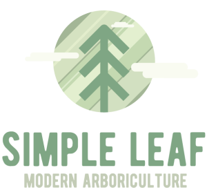 Simple Leaf Logo